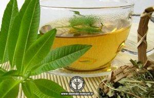 تقویت سیستم دفاعی بدن با دمنوش گیاهی