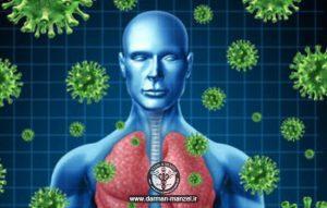 تقویت سیستم ایمنی بدن