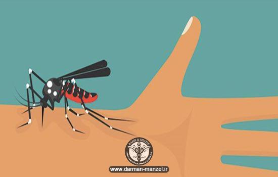 ویروس زیکا را بیشتر بشناسید